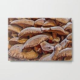 Mushroom Colony Metal Print