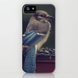 Baby Blue iPhone Case