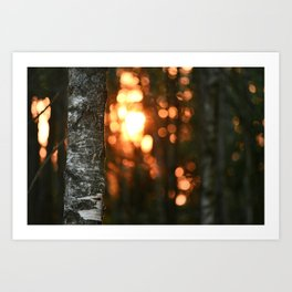 Sunset in Drawsko 5 Art Print