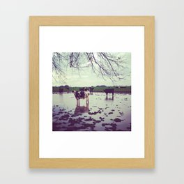 Cow-Camo Framed Art Print