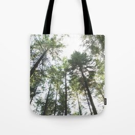 Looking up at the Pine Trees Tote Bag