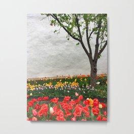 Tulips and a tree Metal Print
