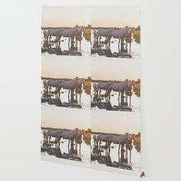 Camargue Horses VI Wallpaper