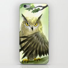 I have a plan iPhone & iPod Skin