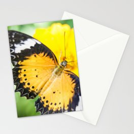 Leopard Lacewing Stationery Cards