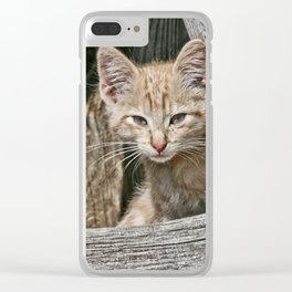 Little Charlie Clear iPhone Case