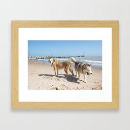 helens dogs  Framed Art Print
