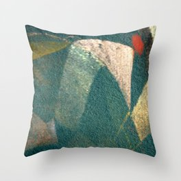 The Monk and the Bicycle Throw Pillow