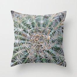 TEXTURES -- Coast Barrel Cactus Throw Pillow