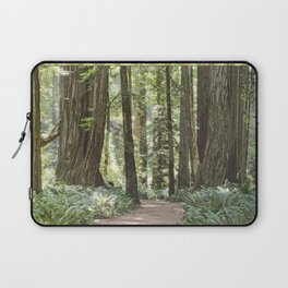SUNNY REDWOOD TRAIL IN THE STOUT GROVE Laptop Sleeve