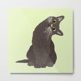 Wanderlust Cat Metal Print