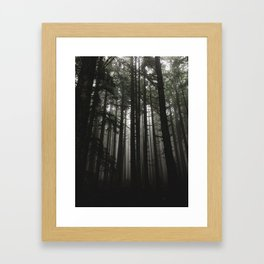 Foggy Trees, Larch Mountain, OR Framed Art Print