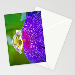 Macro Photography of Exotic Violet Flower Stationery Cards
