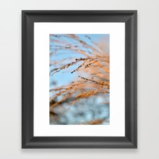 golden leaves against a blue sky. Framed Art Print