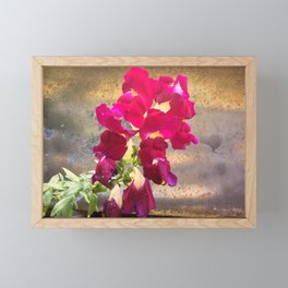 Snap dragon Framed Mini Art Print