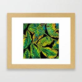 Banana Leaf Belize on Silk Framed Art Print