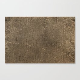 Rustic Tree Bark Pattern Canvas Print