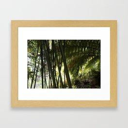 The Jungle of Heligan Framed Art Print