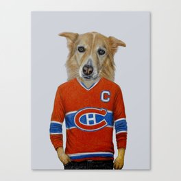 dog in sportwear Canvas Print