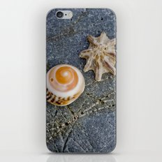 shell duo iPhone & iPod Skin