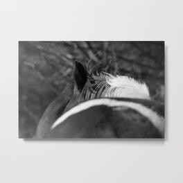 Frissons- crinières au vent Metal Print