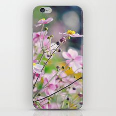 Pretty Anemones iPhone & iPod Skin