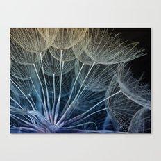 umbrellas Canvas Print