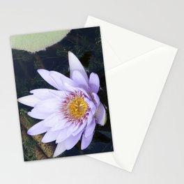 Blue Lotus Flower Stationery Cards