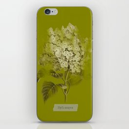 Hydrangea on Moss Cloud iPhone Skin