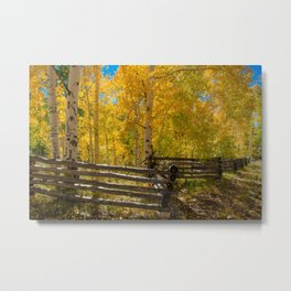 Aspen Autumn Color I - Southern Utah Metal Print