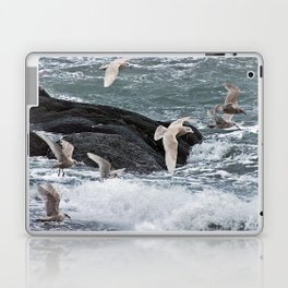 Gulls shop for Dinner Laptop & iPad Skin