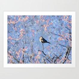 Little Bluebird in the Sun Art Print