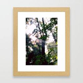 Shining Framed Art Print