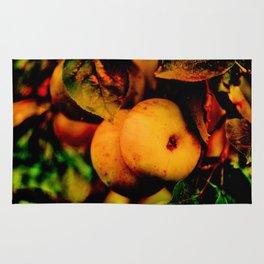 Crispy Fall Apples - Living Still Life Rug