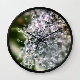 Dew Burst Wall Clock