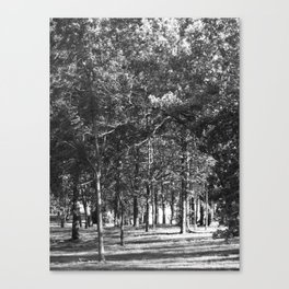 Black-and-White Woods Canvas Print