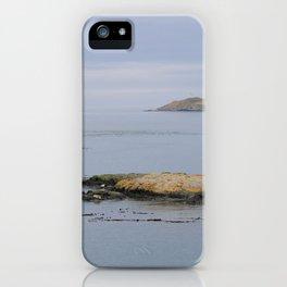 Harbor seals enjoy the San Juans iPhone Case