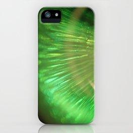 Apple Bones iPhone Case