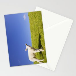 Texel lamb on the island of Texel, The Netherlands Stationery Cards