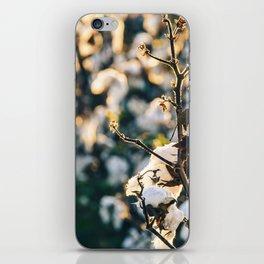 Cotton Field 21 iPhone Skin