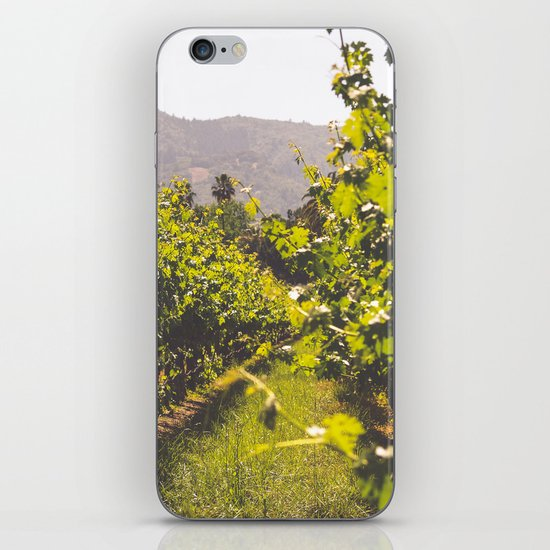 Vineyards 4 iPhone & iPod Skin