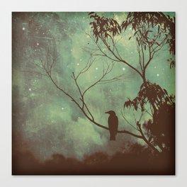 Watching Night Fall Canvas Print
