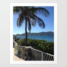 Palm, Porch, St. John, USVI Art Print