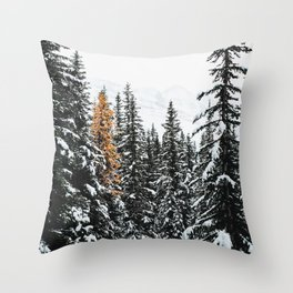 353. Autumn Pine in Snow Forest, Banff, Canada Throw Pillow