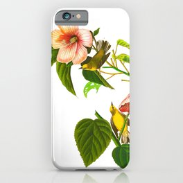 Blue winged Yellow Warbler iPhone Case