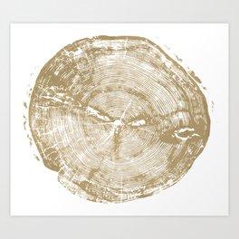Sundance Pine, Tree ring print Art Print
