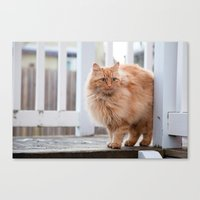 garfield Canvas Prints featuring Garfield by maisie ong