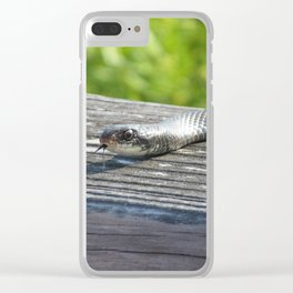 Sssnake Clear iPhone Case