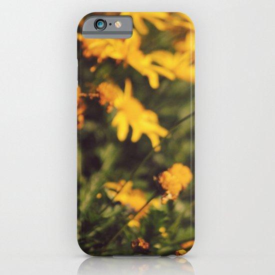 Sigue el camino de margaritas amarillas iPhone & iPod Case