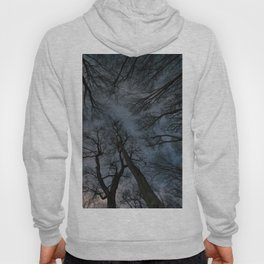 Beautiful Starry night, the Milky Way and the trees, Windy night moving trees, Hoody